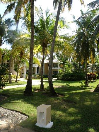 Bavaro Princess All Suites Resort, Spa & Casino: территория отеля (наш домик)