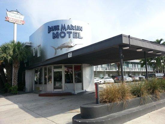 Blue Marlin Motel: hotel