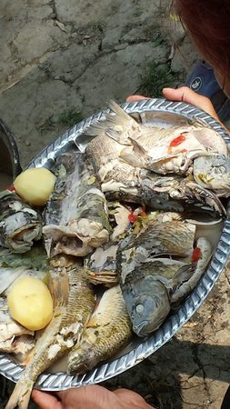 Danube Delta: Yum-yum lunch prepared by a fisherman and his lunch!