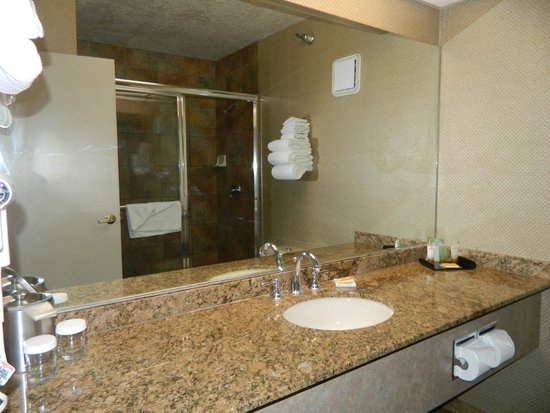 Luxor Las Vegas: OUR SHOWER WAS LITERALLY HUGE!