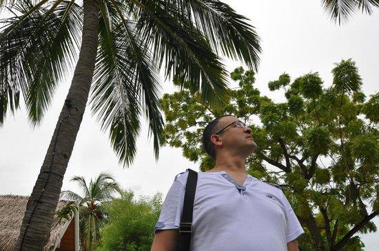 LUX* South Ari Atoll : какой воздух