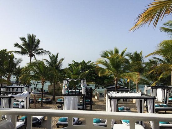 Cofresi Palm Beach & Spa Resort : VIP Beach near tropical