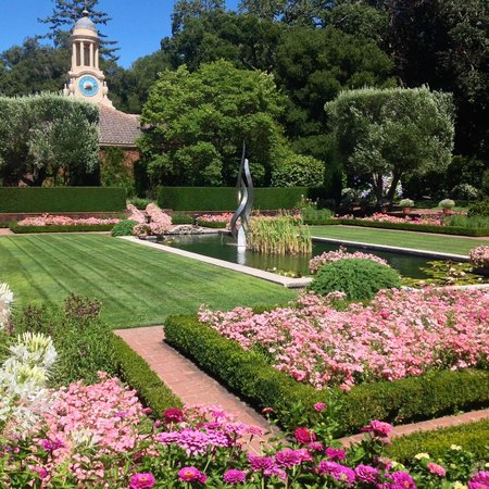 Reflecting pool with Garden Shop Clock Tower - Picture of Filoli ...
