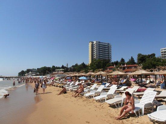 Preslav Hotel : at the beach