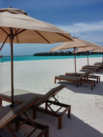 The Sun Siyam Iru Fushi Maldives: Beach view