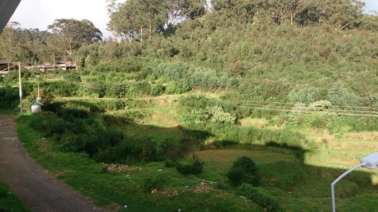 Fortune Retreats Resorts - Ooty: View from room