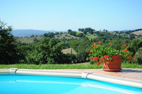 La Meria Az. Agricola : vista dalla piscina