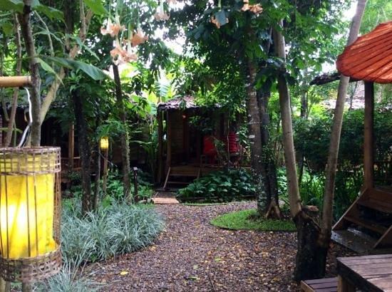 Pai Village Boutique Resort & Farm: jungle feeling
