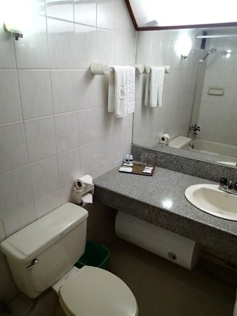 Alfa Hotel : bathroom