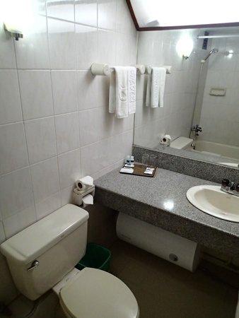 Alfa Hotel: bathroom