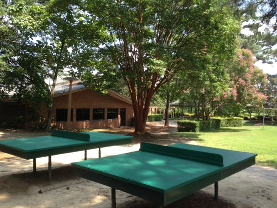 Woodlands Hotel & Suites - Colonial Williamsburg: Mini Golf/Ping Pong
