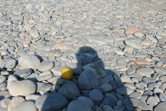 """Louis Creta Princess Beach Hotel: Eine Orange als Vergleich am """"Strand"""""""