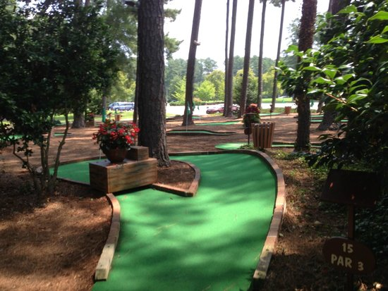 Mini Golf - Picture of Woodlands Hotel & Suites - Colonial ...