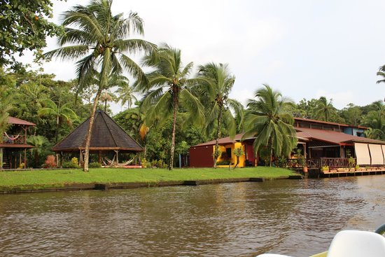 Tortuga Lodge & Gardens: Hotel
