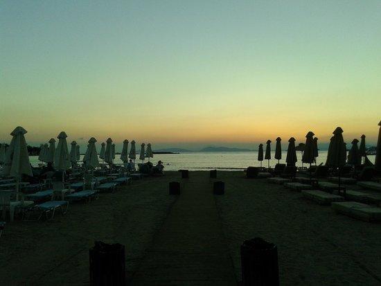 Balux Cafe: sunset
