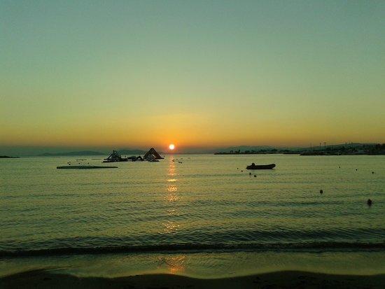Balux Cafe: sunset 2