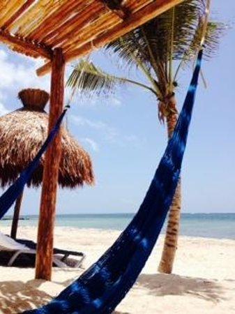 Hotel Marina El Cid Spa & Beach Resort : Relaxing!!!
