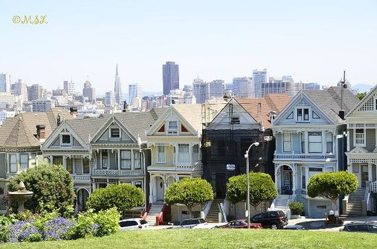 Painted Ladies as seen from Alamo Square