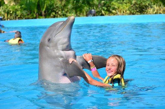 Dolphinaris Riviera Maya Park: dancing