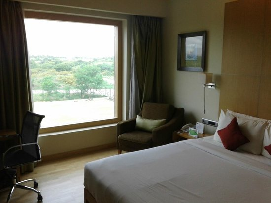 Novotel Hyderabad Airport: View from room