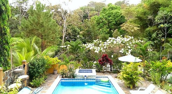 Coconut Lodge: The Garden