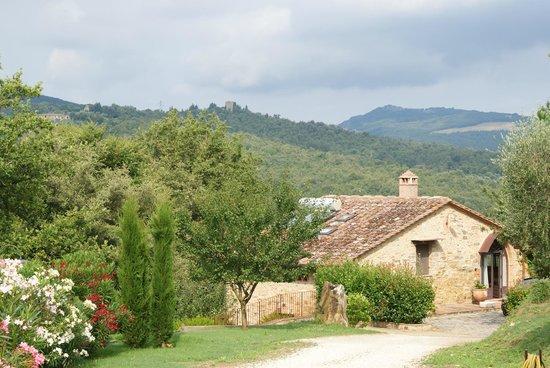Casa Vacanze Scopeto: Blick zum separaten Ferienhaus