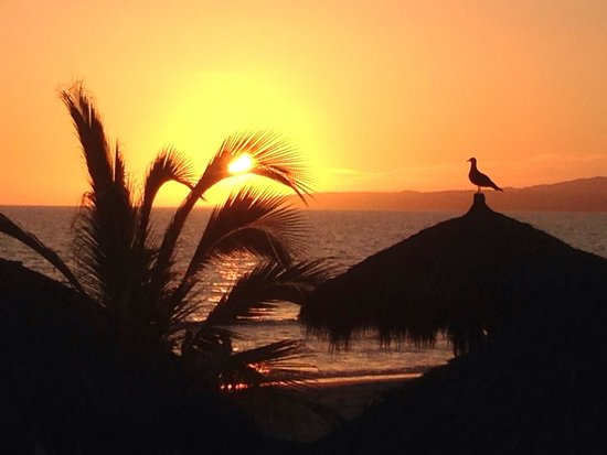Hard Rock Hotel Vallarta: Sun set
