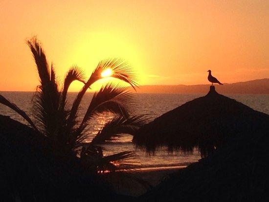 Hard Rock Hotel Vallarta : Sun set