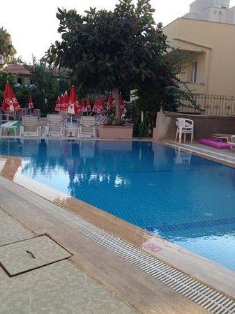 Hotel Bonjour: poolside