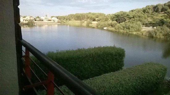 BEST WESTERN Hôtel du Casino le Phoebus : Le petit étang aux canards vue de la chambre