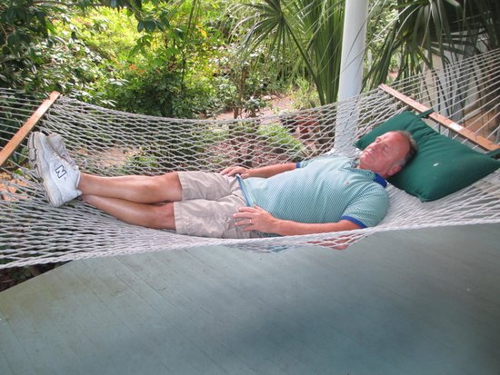 Camellia Cottage Bed & Breakfast: Love the hammock!