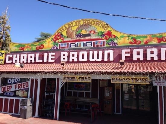 Charlie Brown Farms: Charlie Brown Farm entrance on CA138