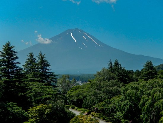 Fuji View Hotel: Mt Fuji, visible on a clear day from front-facing rooms & dinning room.