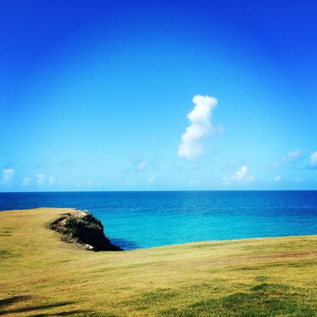 The Cove Eleuthera : if i ever get married, this is the spot to do it.