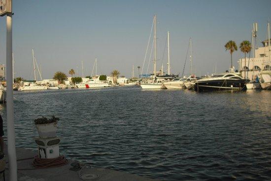 Hotel Abou Sofiane : harbour