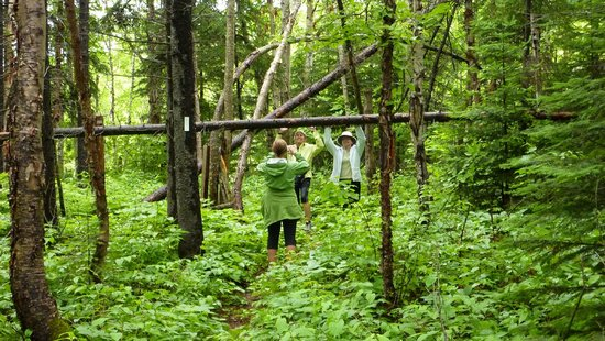 Rock Island Lodge : hiking along the Voyageur Trail nearby