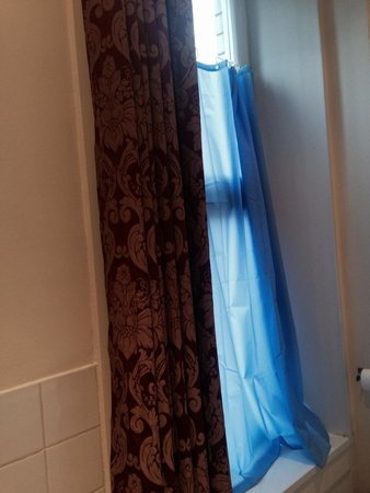 Alexander Thomson Hotel: Shower curtain up at window as no blind.