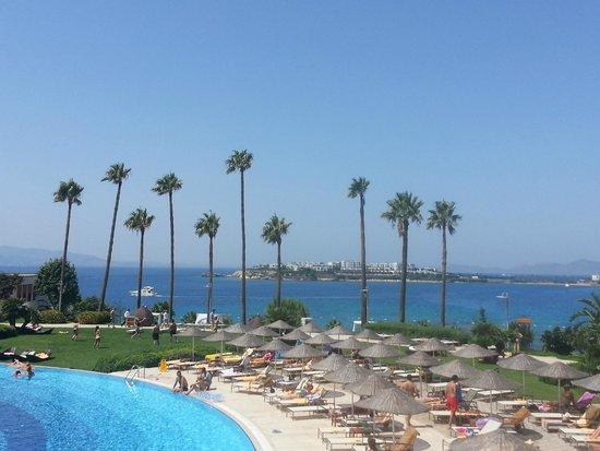 Kefaluka Resort : Pool