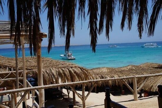 Mahmya Island: Vue du restaurant