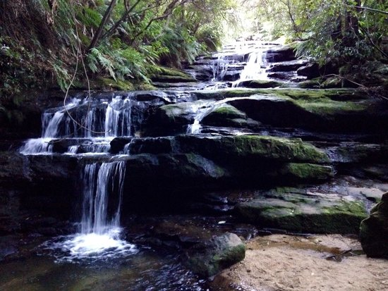 Leura Cascades: Even in dry weather the cascades did not disappoint