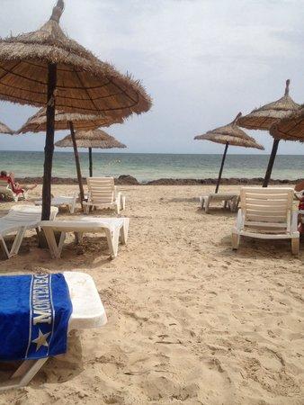 Diana Beach Hotel : Vue sur les algues....