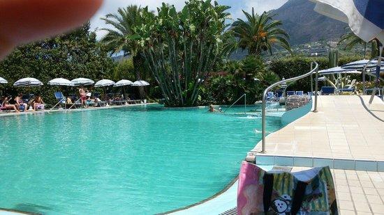 Park Hotel Terme Mediterraneo: La piscina