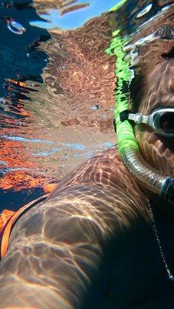 Sheraton Soma Bay Resort: Snorkling