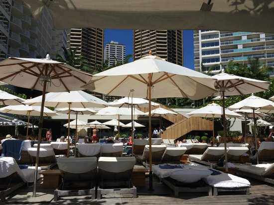 The Modern Honolulu: Poolside lounging doesn't get much better than this!
