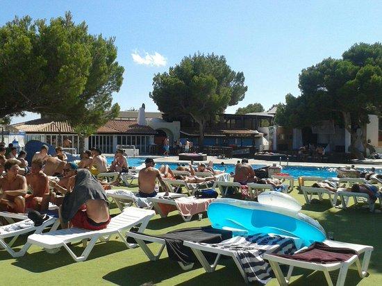 azuLine Club Cala Martina Ibiza: La piscina nel pomeriggio..  ideale per fare due chiacchiere