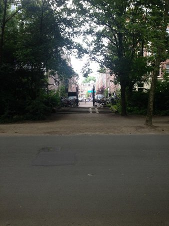 Vondelpark : The photo doesn't do it any justice, but such a beautiful street!!