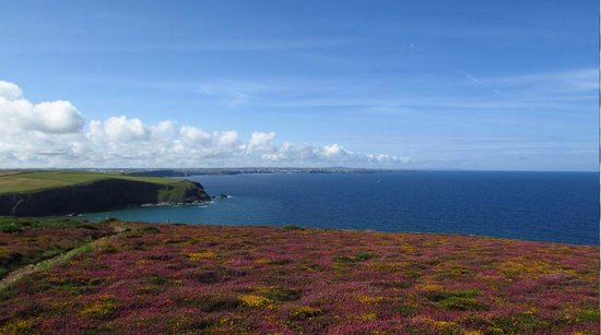 Carnewas and Bedruthan Steps: The view from the SW coast path just South of Carnewas