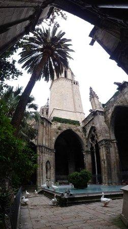 Catedral de Barcelona : Small garden inside