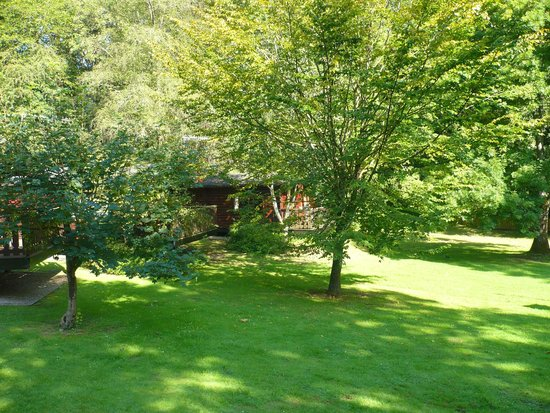 Whitemead Forest Park: View from log cabin veranda