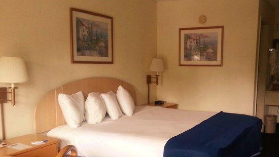 Howard Johnson Enchanted Land Hotel Kissimmee FL: King Bed